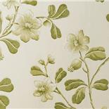 Little Greene London Wallpapers Broadwick Street Garden (1)