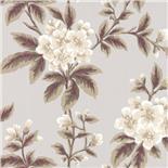 Little Greene London Wallpapers III Grosvenor Street Begonia (111)