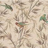Little Greene London Wallpapers Great Ormond Street Cappuccino (46)