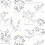 Little Greene 1950s Wallpaper Herbes Line (175)