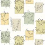 Little Greene 1950s Wallpaper Herbes Spring (173)